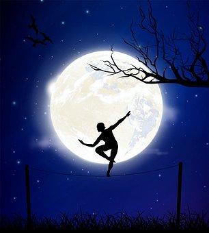 月亮, 夜, 平衡, 走钢丝, 分支机构, 鸟, 夜景景观, 性质, 满月图片