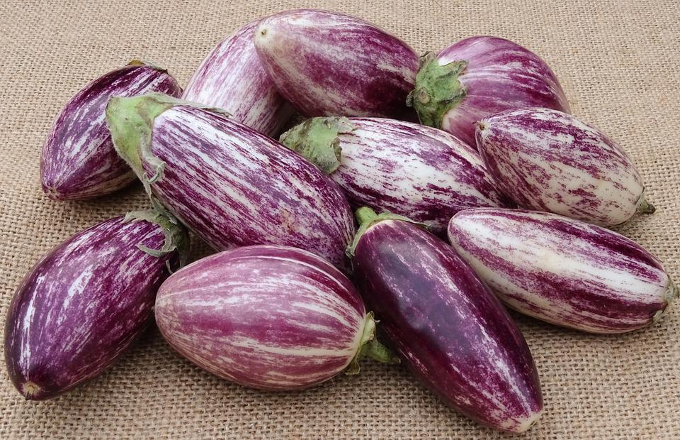 Aubergine, Grønnsaker, Kokk, Sunt, Nachtschattengewächs