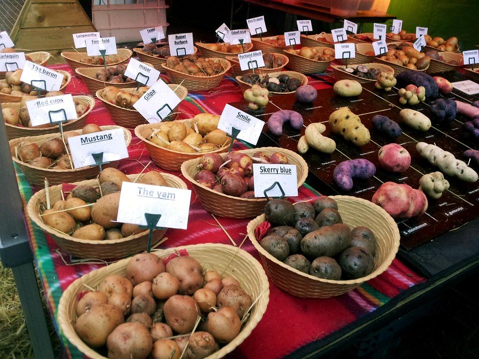 Moderne Küche, Gourmet, Kartoffeln, Lebensmittel, Markt