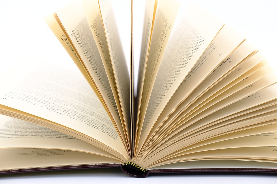 book leaves pages book pages paper pitched - Book Pages