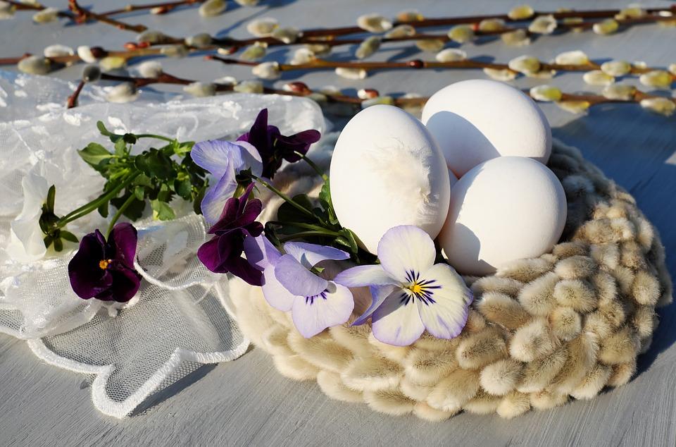 Пасхальные Яйца, Яйцо, Белый, Пасха Нест, Гнездо, Ива