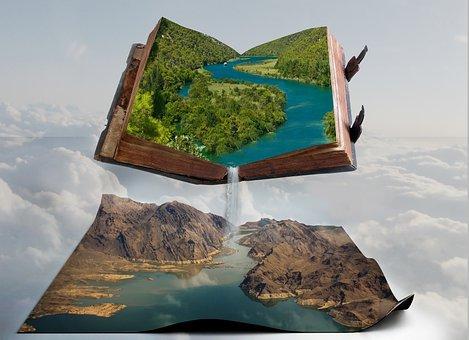 自然, 旅, 風景, 空, 書籍, 工場, フォレスト, 平和, 本