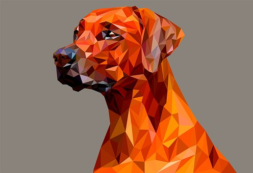 Poly Low Vector Geometric