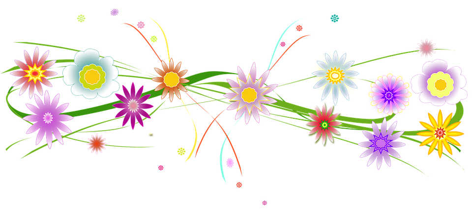 Partei Blumen Farben · Kostenloses Bild auf Pixabay