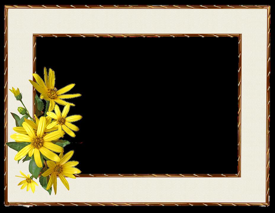Frame Border Yellow Flower 3264812 on Swirl Page Border