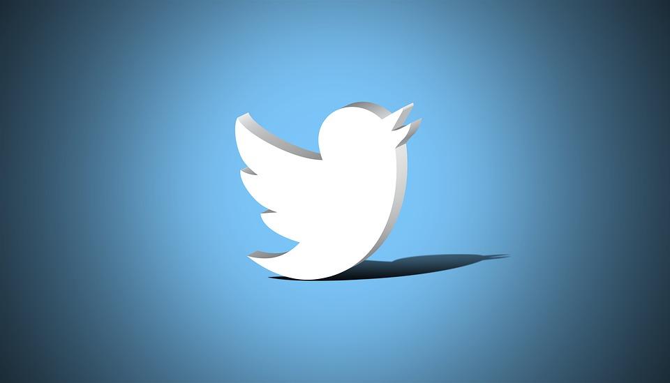 ツイッターロゴの画像|「Twitter広告」「オートプロモート」の特徴|一般社団法人アインの集客マーケティングブログ