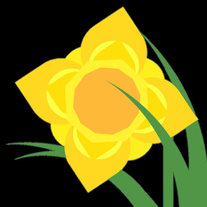 Clipart Narzisse Narcissus Kostenloses Bild Auf Pixabay