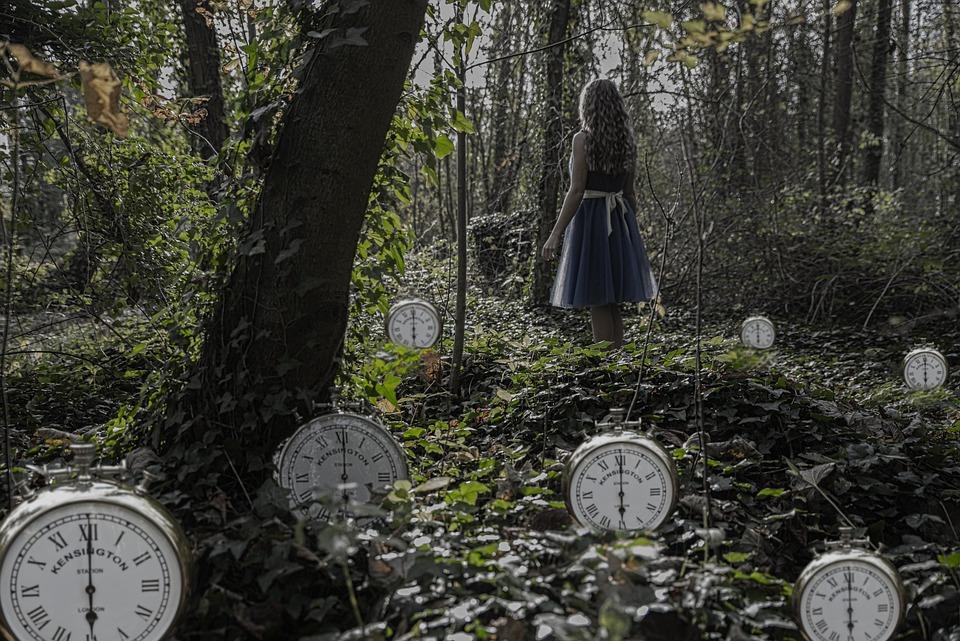Tempo, Legno, Albero, Natura, All'Aperto, Alice