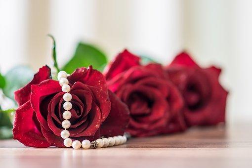 Gift, Rose, Decoration, Flower