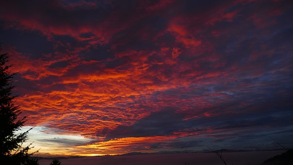 Image result for daybreak