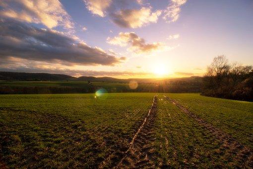 風景, 自然, フィールド, パノラマ, 農業, 空, シリアル, 夏, 草