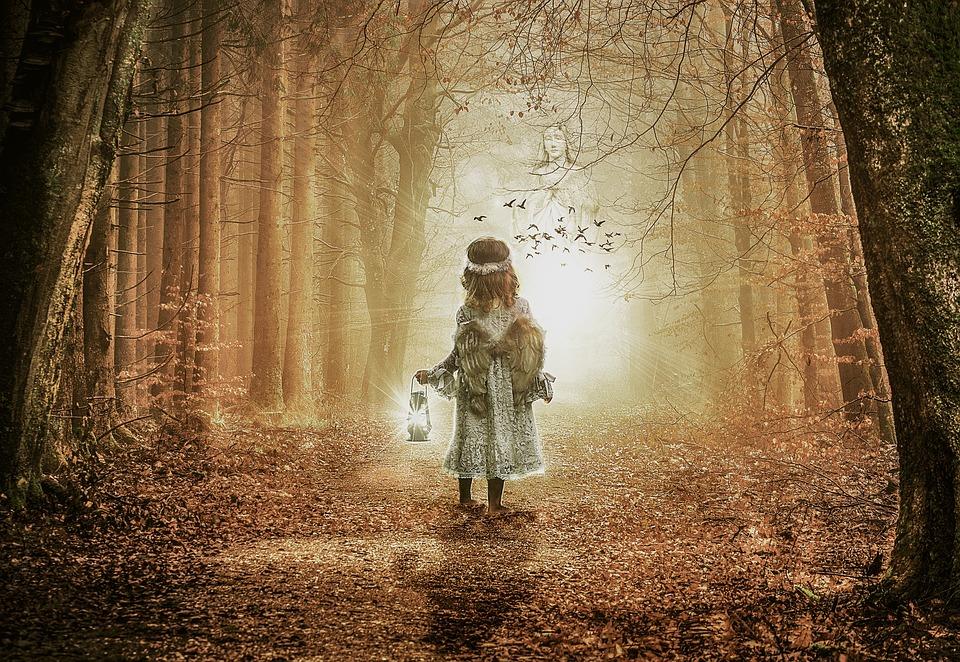 Tree, Light, Dark, Nature, Wood, Fantasy, Outdoors