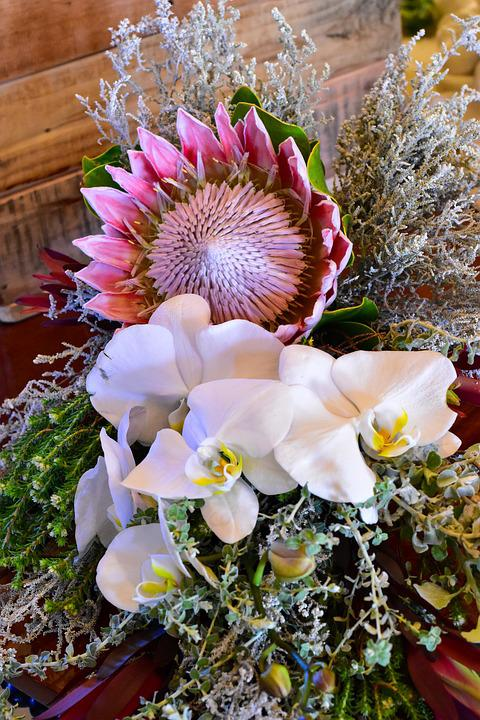 Flower Bouquet King Protea Orchid · Free photo on Pixabay