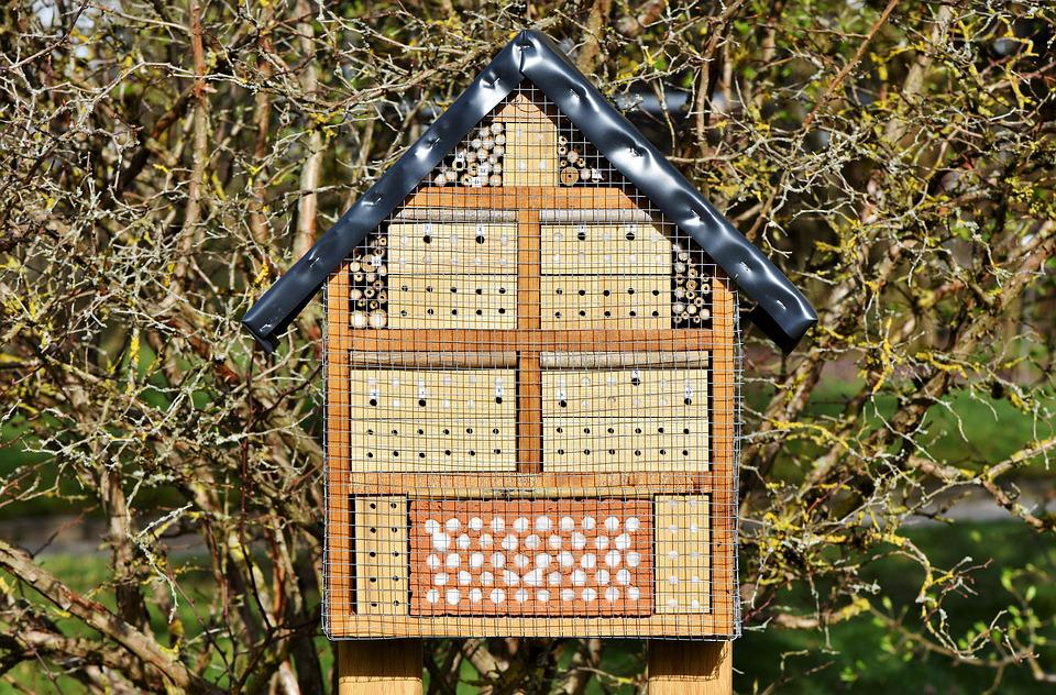 Insect Hotel, Insect House, Insect Box