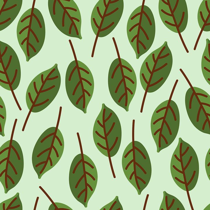 Design Pattern Background Green Wallpaper Flora