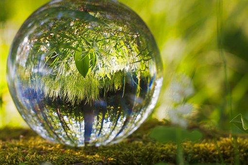 ボール, 環境, 草, 自然, 球面, 反射, 光, ラウンド, 光沢のあります