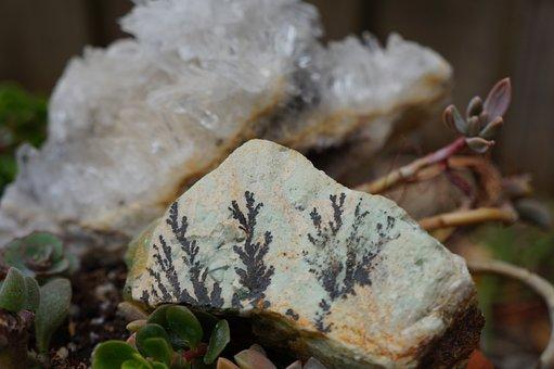 Nature, Outdoors, Rock Garden
