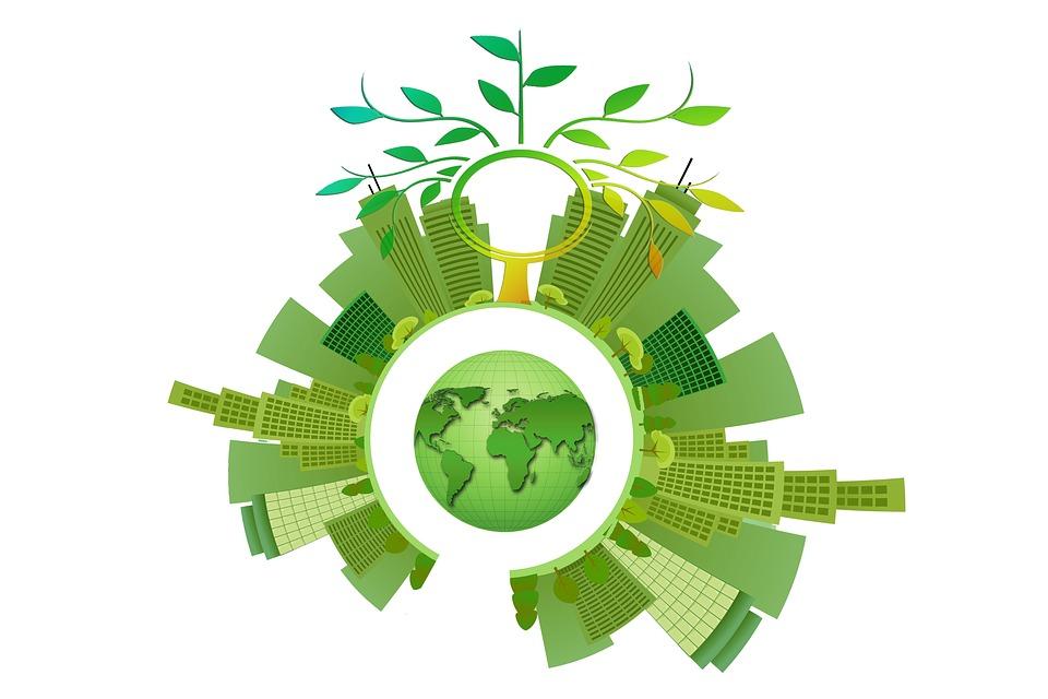 Sustentabilidade, Energia, Árvore, Estética, Folhas