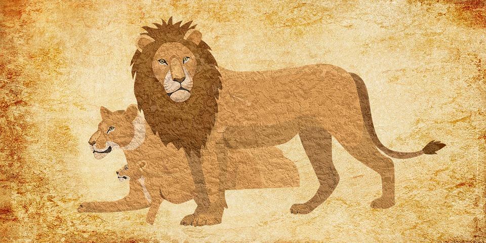 lion 3297301 960 720