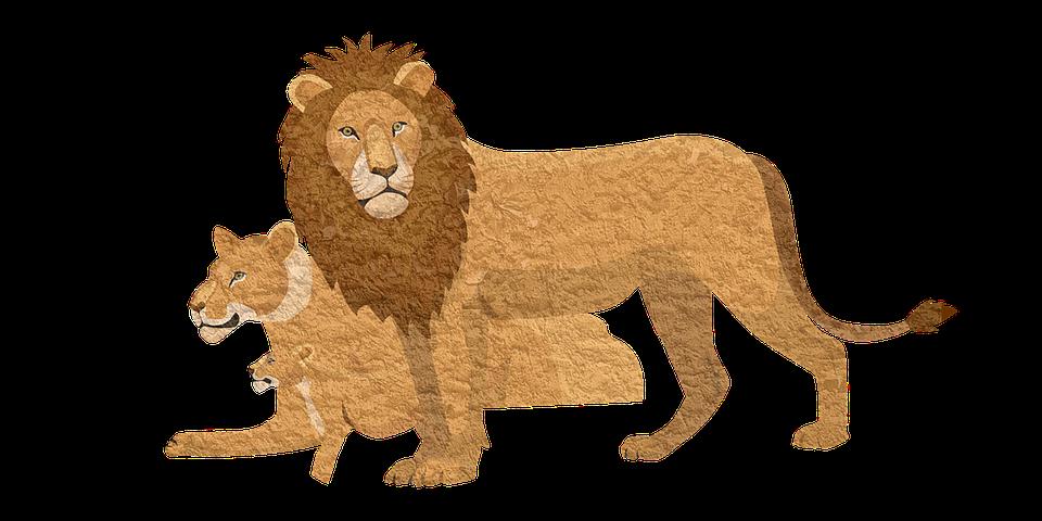 Днем рождения, лев в картинках для детей