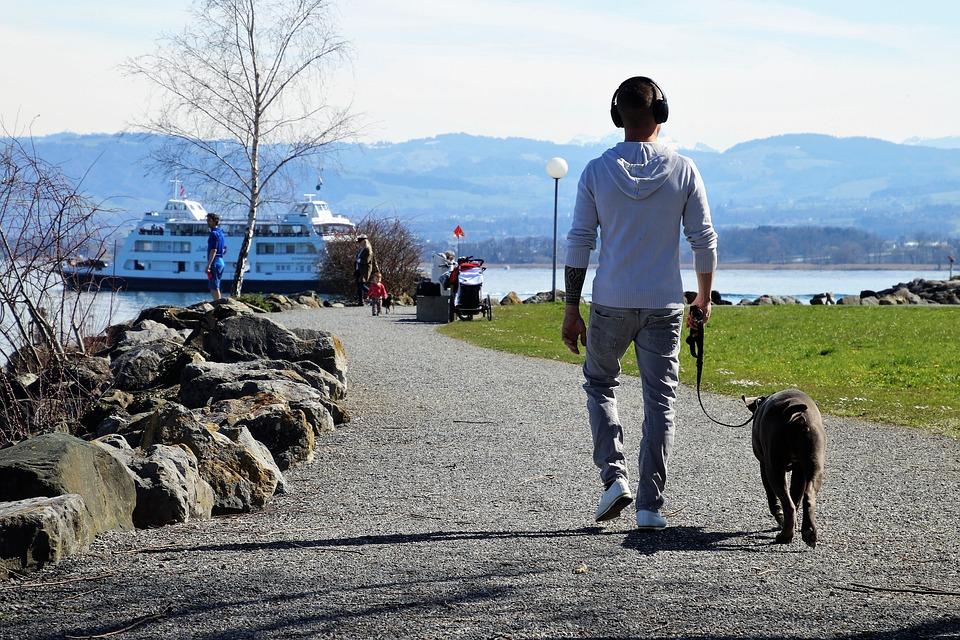 Consejos para que  tu mascota comparta un estilo de vida sostenible