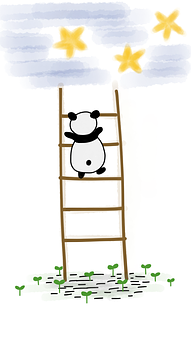 Panda, Ladder, Stars, Sky, Climbing