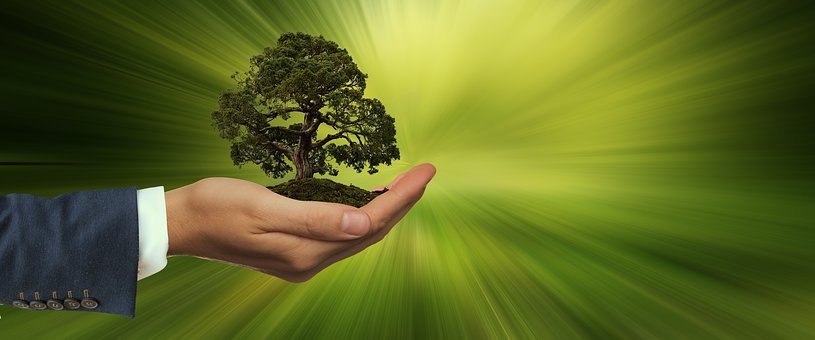 800+ Free Sustainability & Innovation Images - Pixabay
