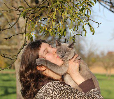 Portrait, Young Woman, Cat, Of Course