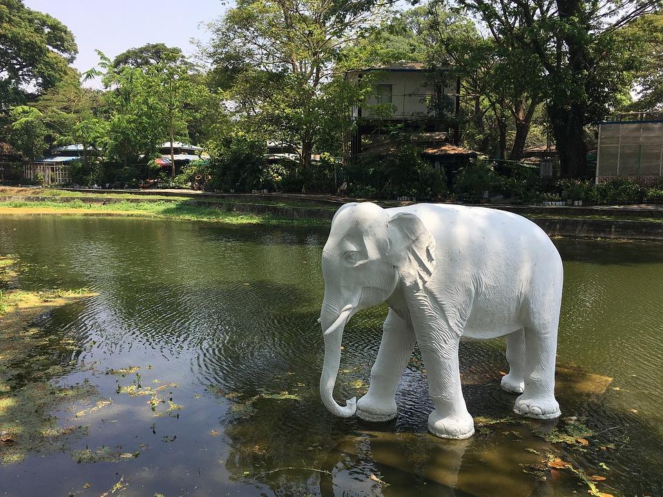 水, 自然, 公園, 反射, ツリー, 川, プール, アウトドア, 湖, 観光, 象, 魅力, 旅行