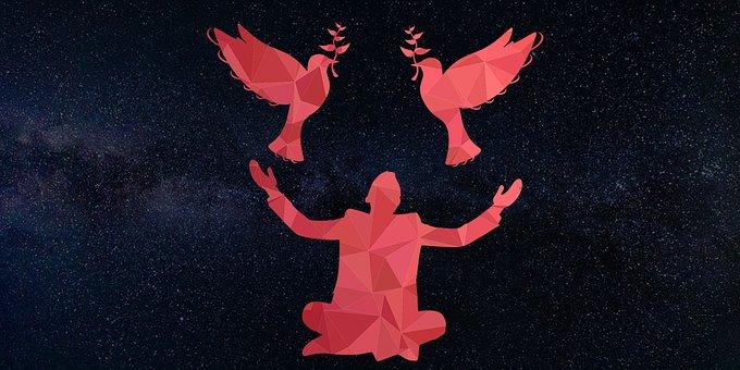 鳥, ハト, 男, 銀河, 平和文, 平和Antonym, 種類の平和