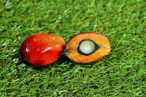 Повышение НДС на «пальму» не приведет к росту спроса на продукты без ЗМЖ