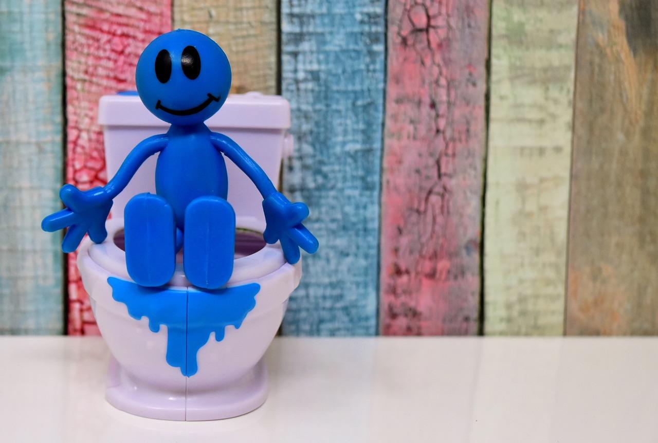 Toilet Training Anak
