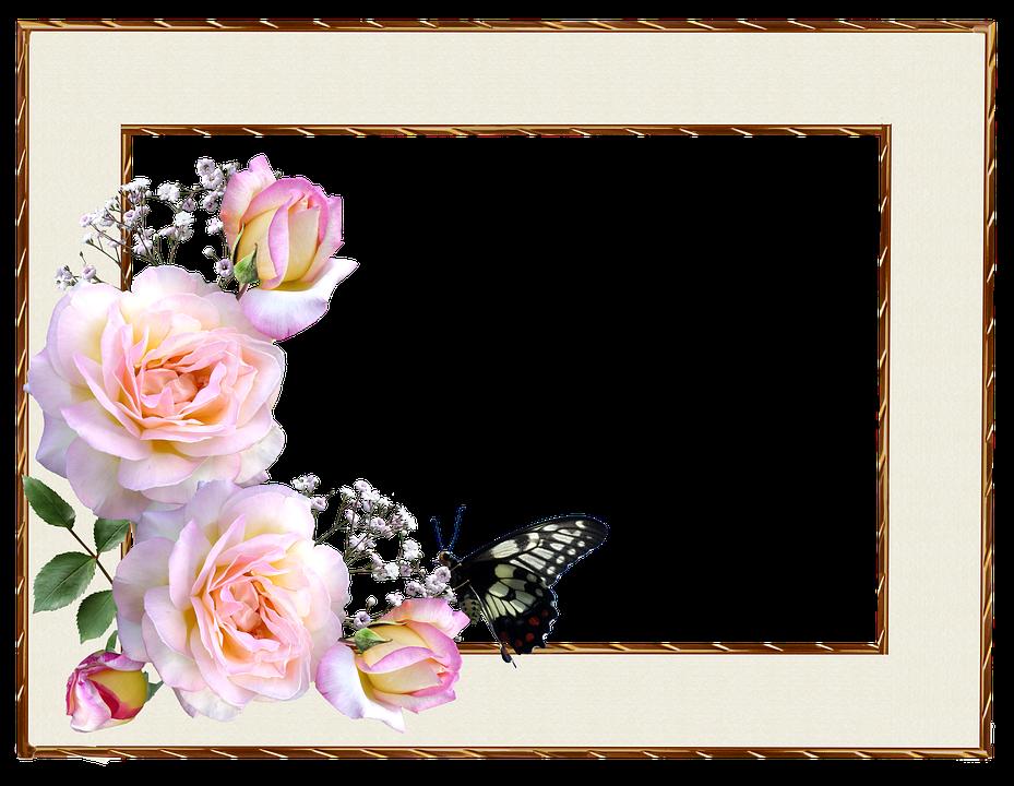 Cerceve Sinir Pembe Pixabay De Ucretsiz Fotograf