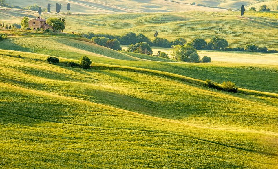 Lapangan Pemandangan Alam Pedesaan