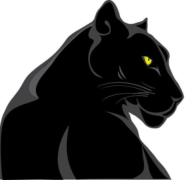 Panther Animals Feline 183 Free Vector Graphic On Pixabay