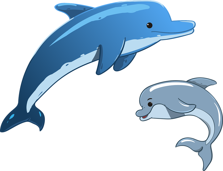 dolphin sea animals mother and  u00b7 free vector graphic on Cat Sleeping in Hammock free kitty cat clipart