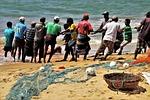 praca, rybak, liny