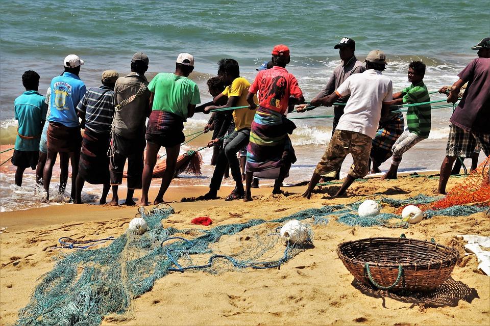 Arbeit, Der Fischer, Seil, Netzwerk, Korb, Ocean