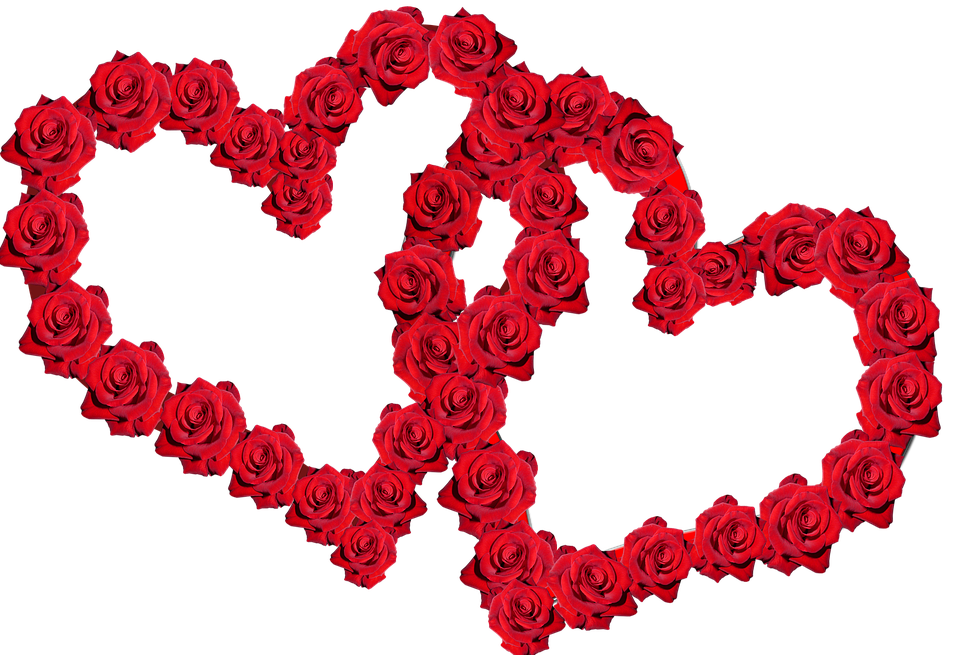 valentine red roses heart free photo on pixabay