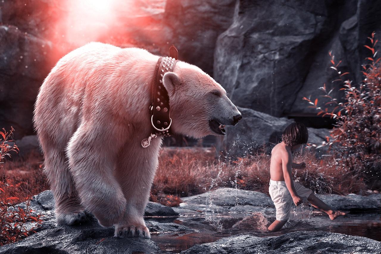 словами, картинки белых медведей фэнтези инсульта