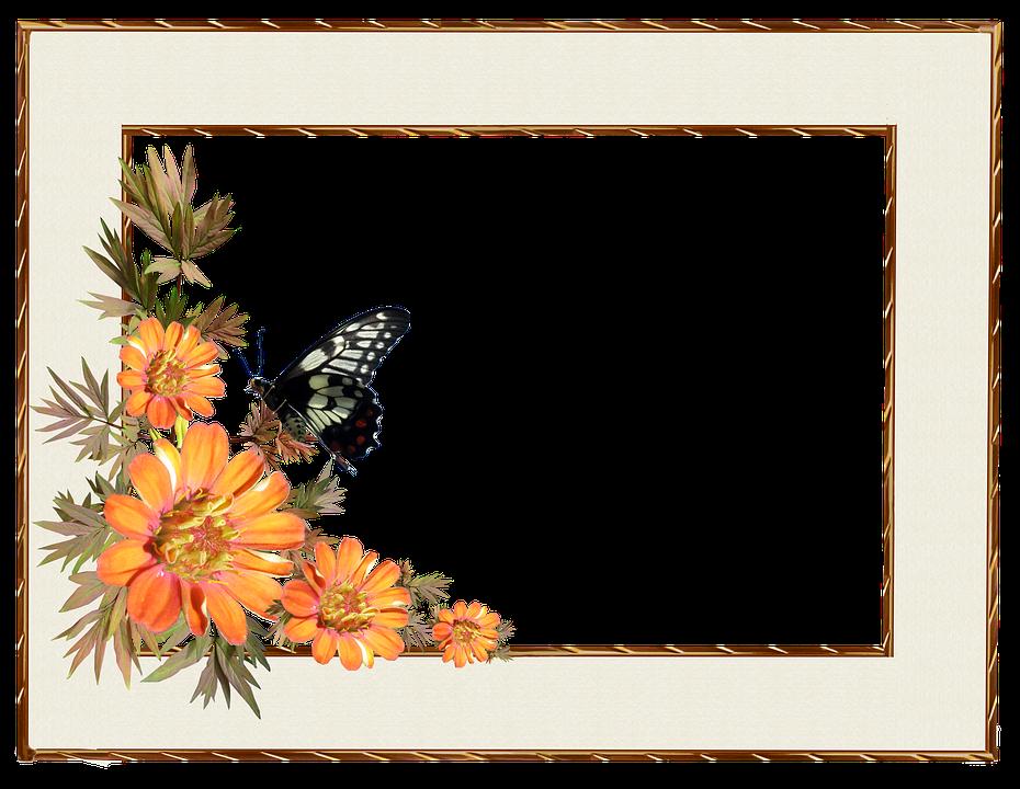 frame border flowers 183 free image on pixabay