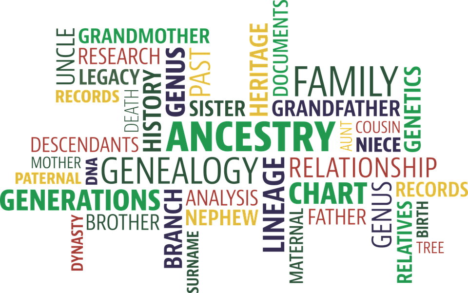 Word Cloud Search Ancestry - Free vector graphic on Pixabay