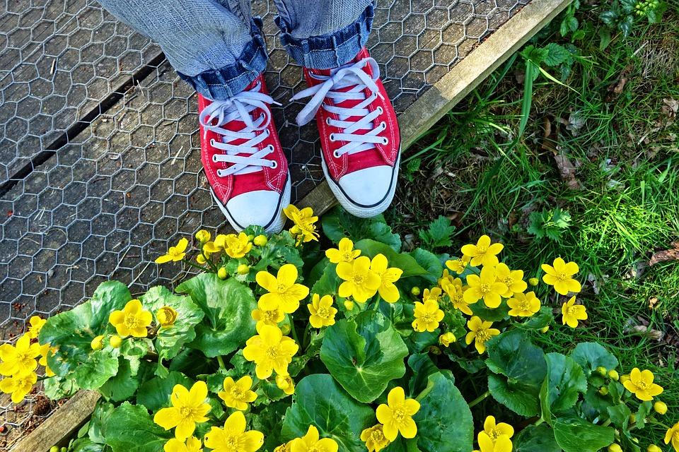 45fd88e99c8 Πόδι Παπούτσι Ύπουλος Γυναίκα Τα - Δωρεάν φωτογραφία στο Pixabay
