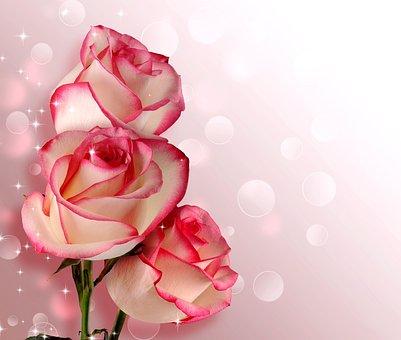 600 Free Birthday Bouquet Birthday Images Pixabay