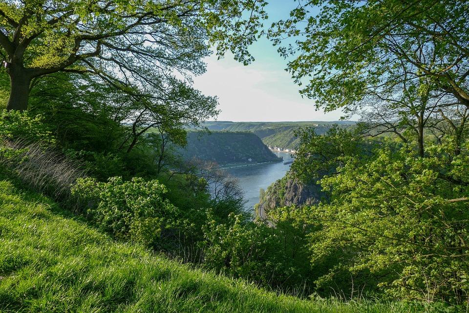 Loreleyblick Urbar, Loreley, Rock, Sage, River, Rhin