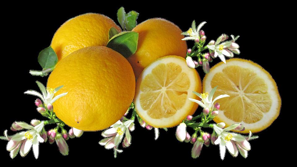 Limoni, Agrumi, Frutta, Fiore, Cucina
