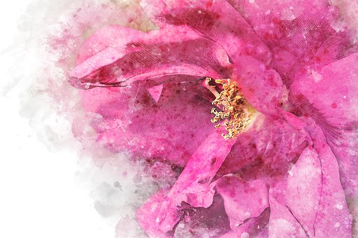 watercolor images 183 pixabay 183 download free pictures