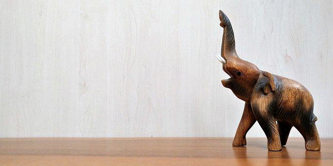 Fond d 39 cran images pixabay t l chargez des images gratuites - Photos d elephants gratuites ...