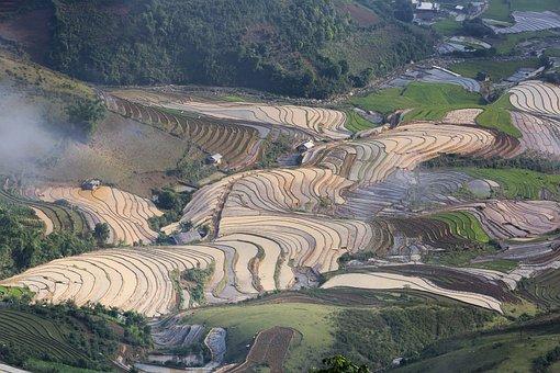 bd1e47658 500+ Free Laos & Asia Images - Pixabay
