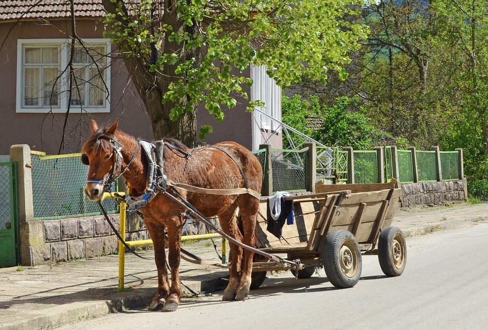 ブルガリア, 村, 馬, ワゴン, 春, 国, 農村, バルカン半島の, ハーネス, 手綱, 田舎, 仕事の馬